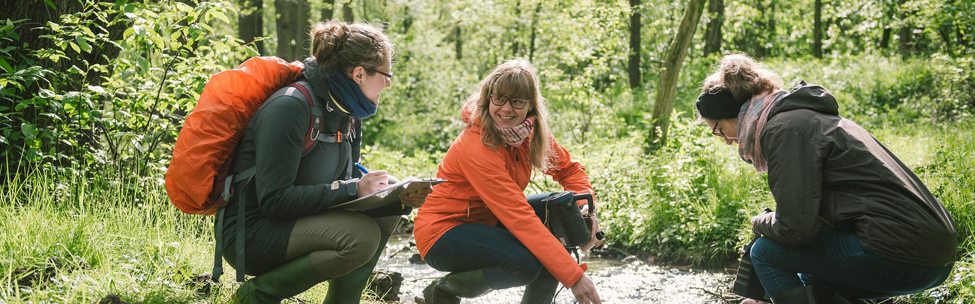 Bachelor-Studium Ökologie und Umweltschutz: Studierende machen Untersuchungen an einem Bach in Zittau